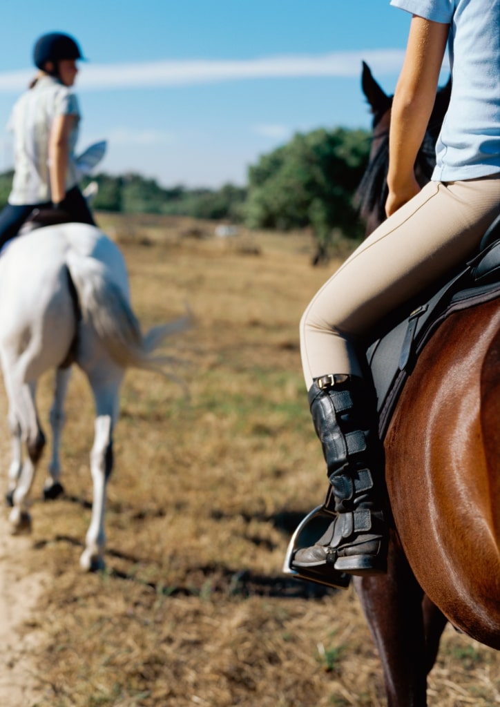 horse riding activity